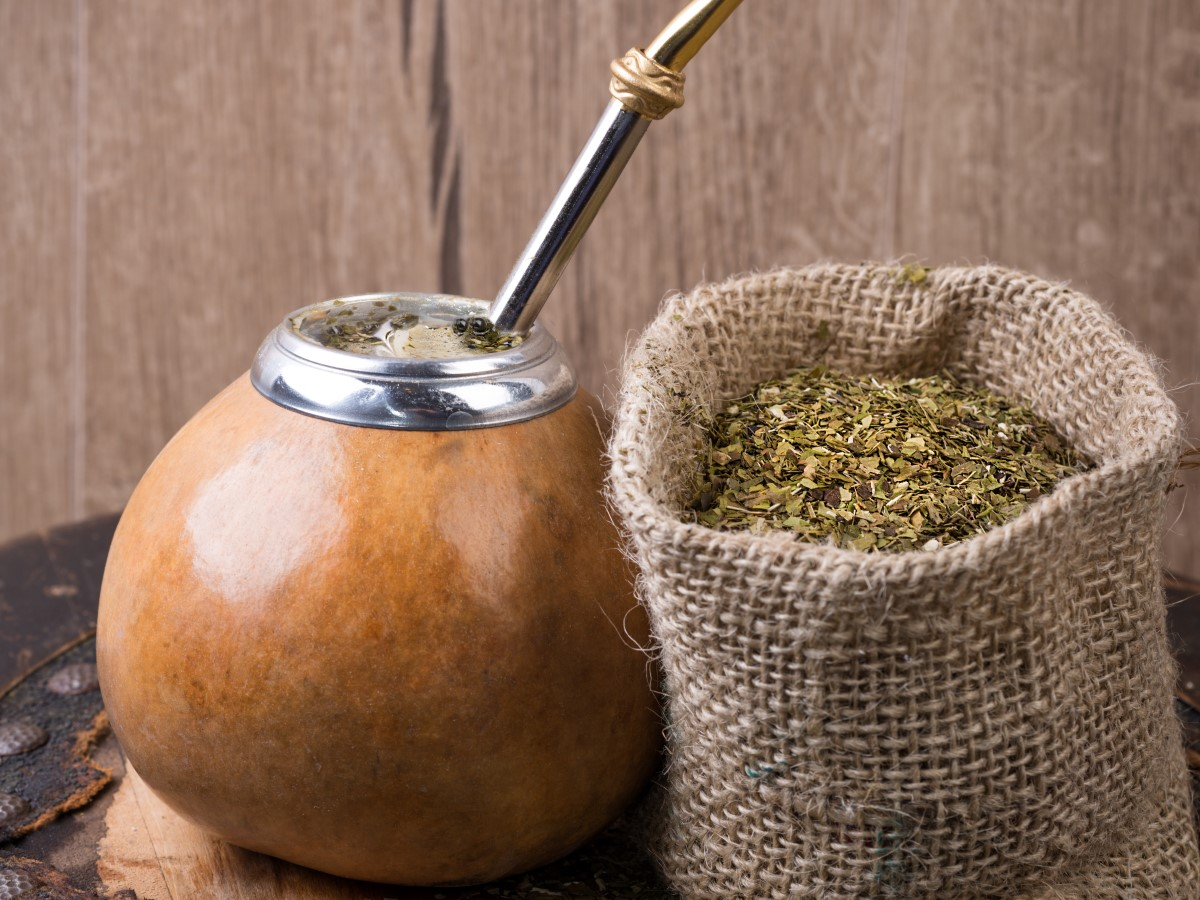 erva mate e os seus benefícios para a saúde