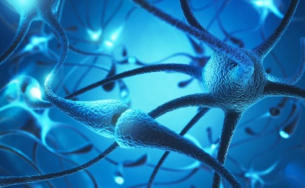 esclerose múltipla e alimentação